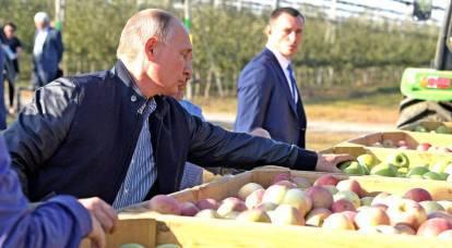 """""""Tomato Wars"""": tutto ciò di cui è capace la Russia nel Caucaso?"""