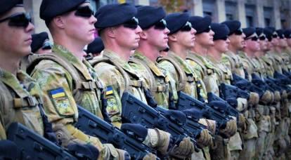 """""""Il nemico non passerà."""" Le forze unite dell'Ucraina hanno portato alla piena prontezza al combattimento"""