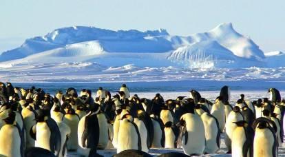 Japón presentó reclamos territoriales de Rusia en la Antártida