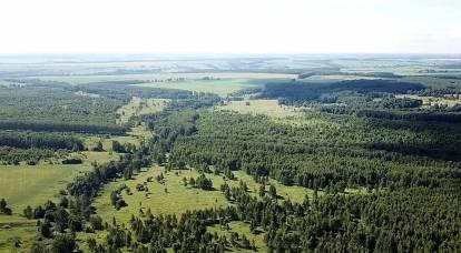 Hectare « abandonné » : pourquoi vaut-il mieux donner des terres aux Russes, pas aux Ouzbeks