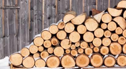 Passaggio alla legna da ardere: la Lituania ha capito come sbarazzarsi del gas russo