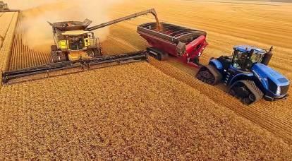 """""""Oro"""" dei campi russi: quali sono le possibilità della Russia di diventare una grande potenza agraria"""