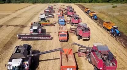 L'Occidente ha grossolanamente sbagliato i calcoli nelle stime del raccolto russo