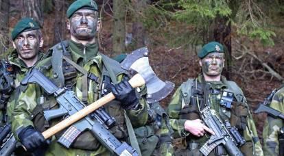 """Los generales suecos prometieron crear """"problemas"""" para Rusia"""