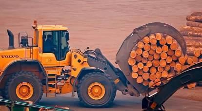 Perché i prezzi del legno in Russia stanno battendo record