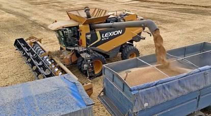 La Russia non dovrebbe rallegrarsi dell'aumento dei prezzi mondiali del grano