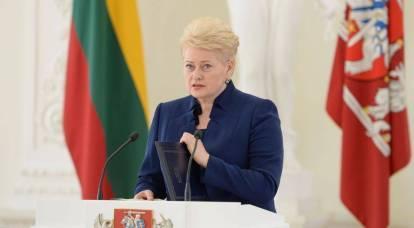 La Lituania chiede di trasferire il Donbass, la Crimea e lo stretto di Kerch sotto il controllo delle Nazioni Unite