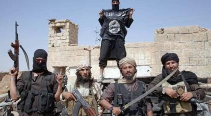 Lavrov: L'ISIS è quasi un alleato degli Stati Uniti in Medio Oriente