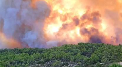 """""""And where is NATO?"""": Turks commented on Russia's assistance in fighting fires"""