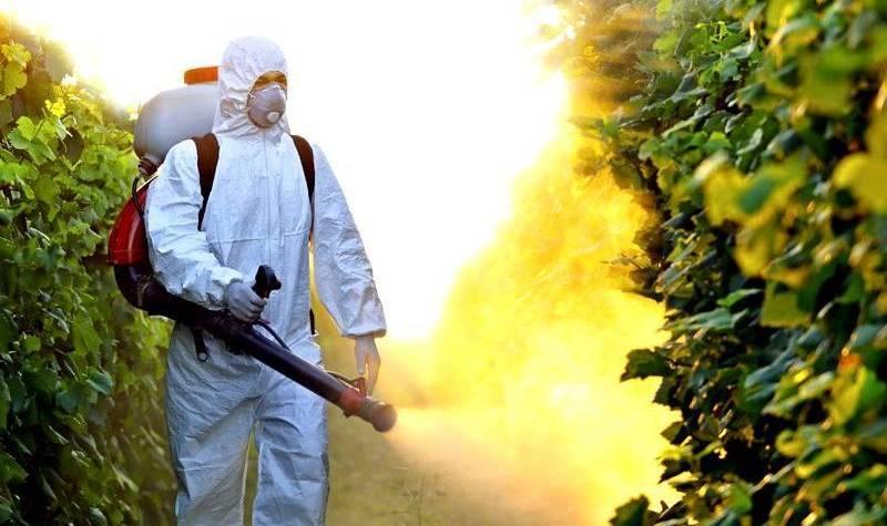 """El estadounidense """"Monsanto"""" se hizo cargo de la industria agrícola rusa."""