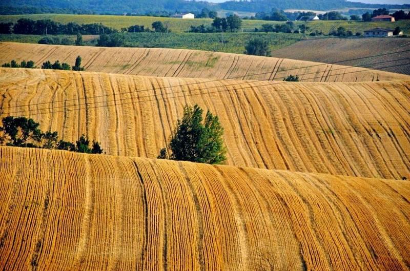 Чем обернется распродажа украинских земель