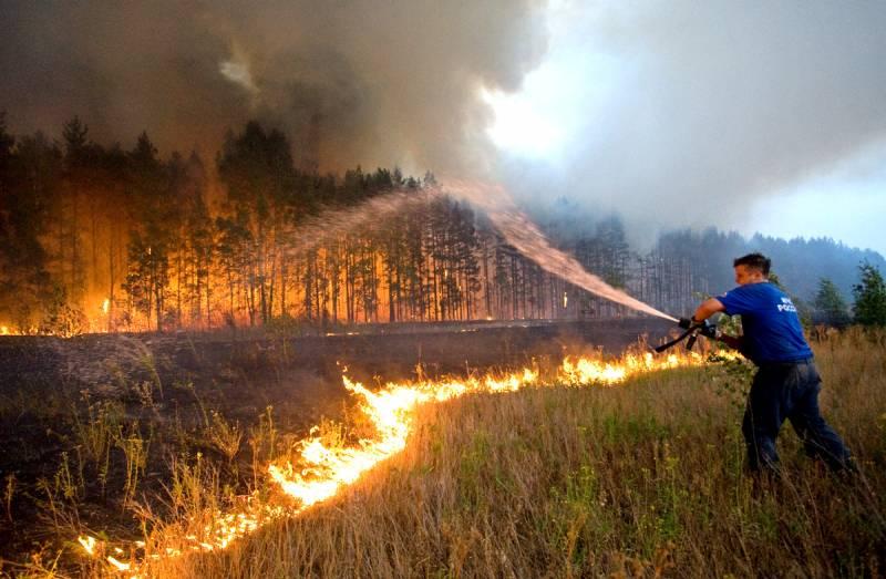 Почему в России уже можно не тушить лесные пожары