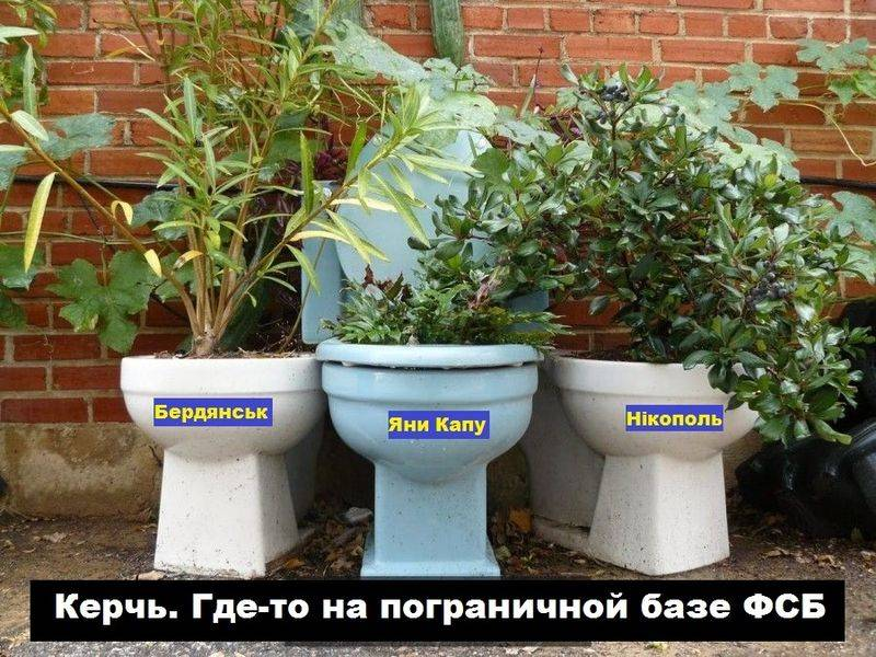 In Russia intend to send a parcel from the toilet to Ukraine