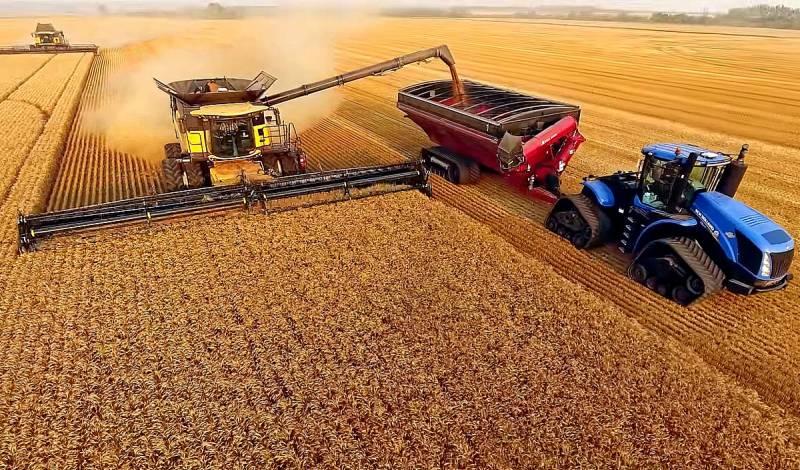 Чем обусловлен запрет на экспорт российской пшеницы